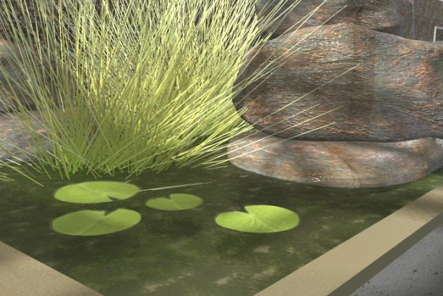 Close-up of grass and lily pads in fountain